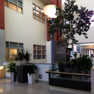 juravinski cancer centre -Hamilton , ontario