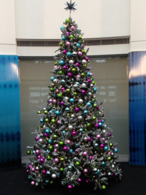Mississauga Christmas Holiday Tree