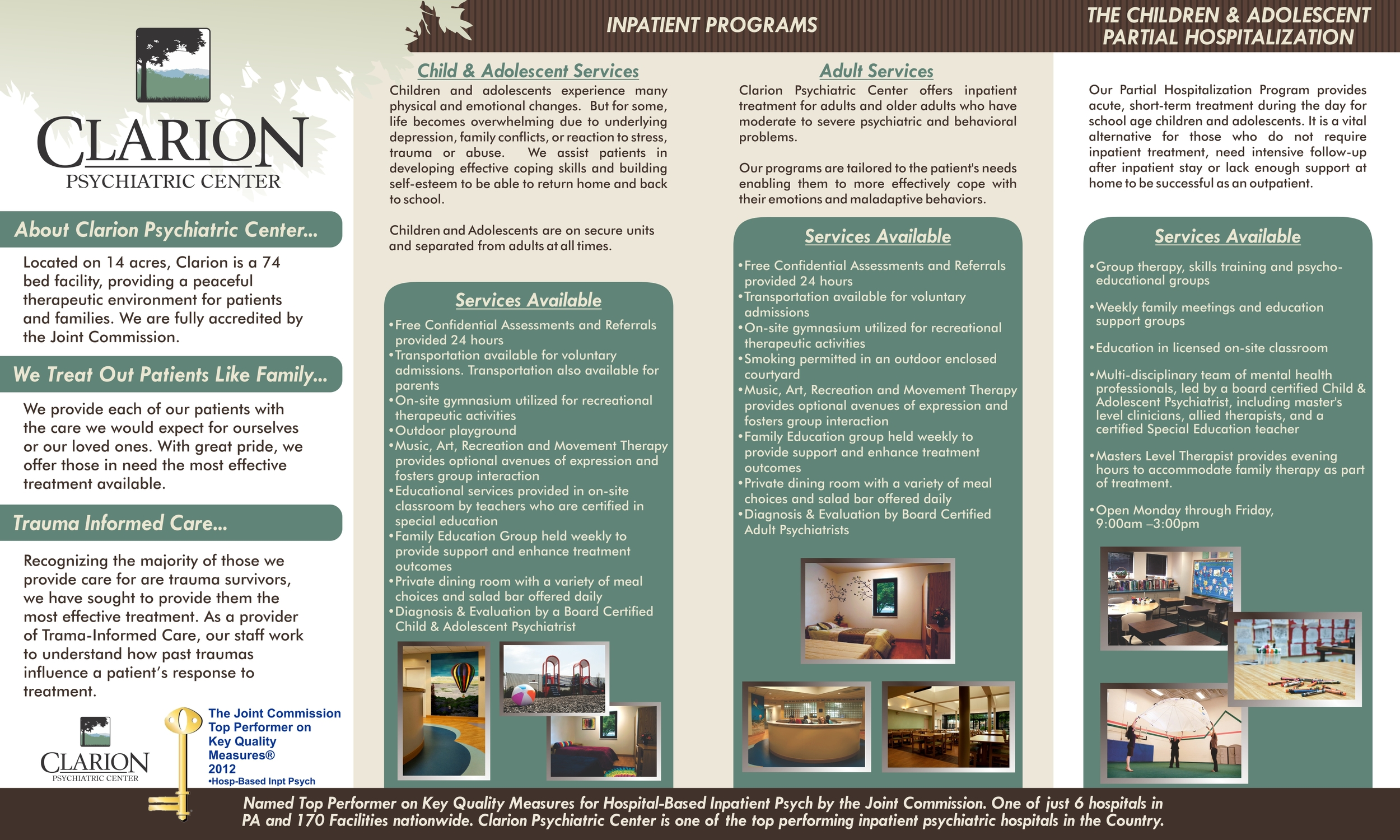 4 fold brochure, viewed in print-ready format, side 2