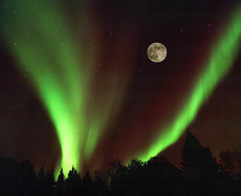 Northern Lights-moon-1024.jpg