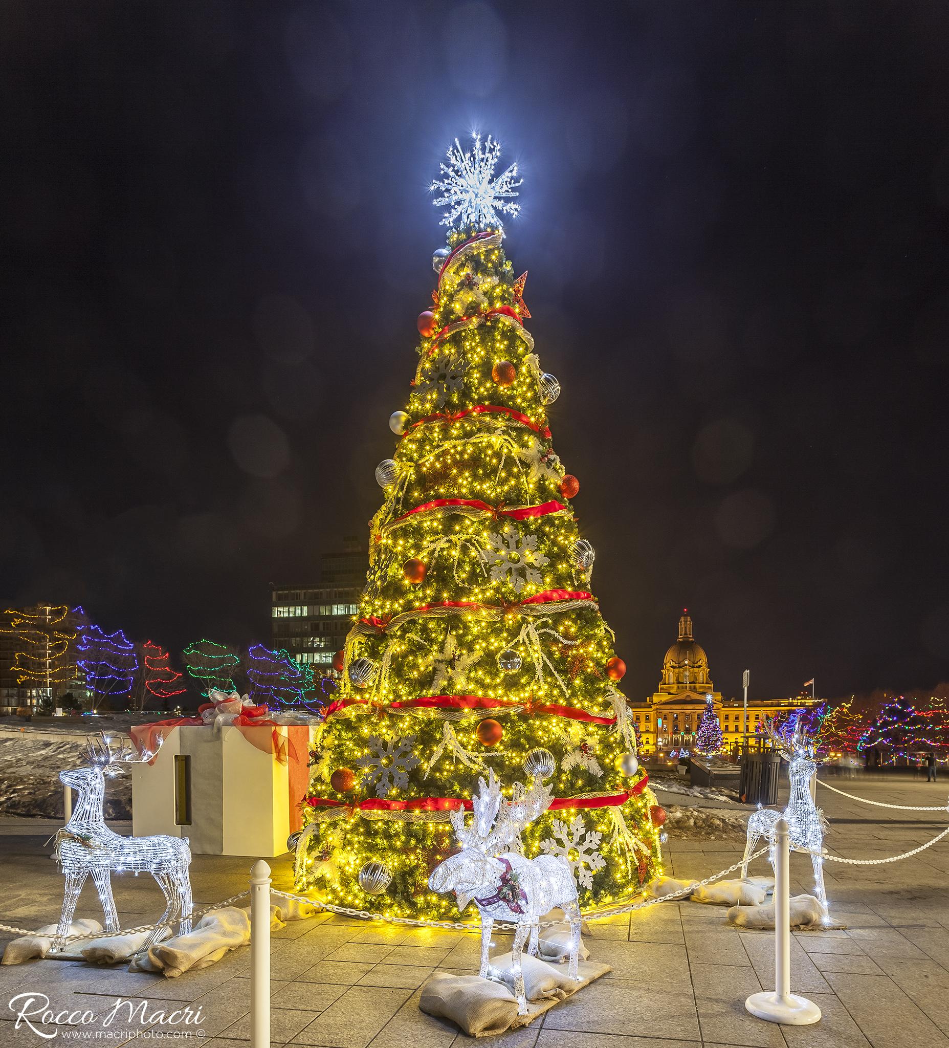 Christmas lights at Legislature-1©.jpg