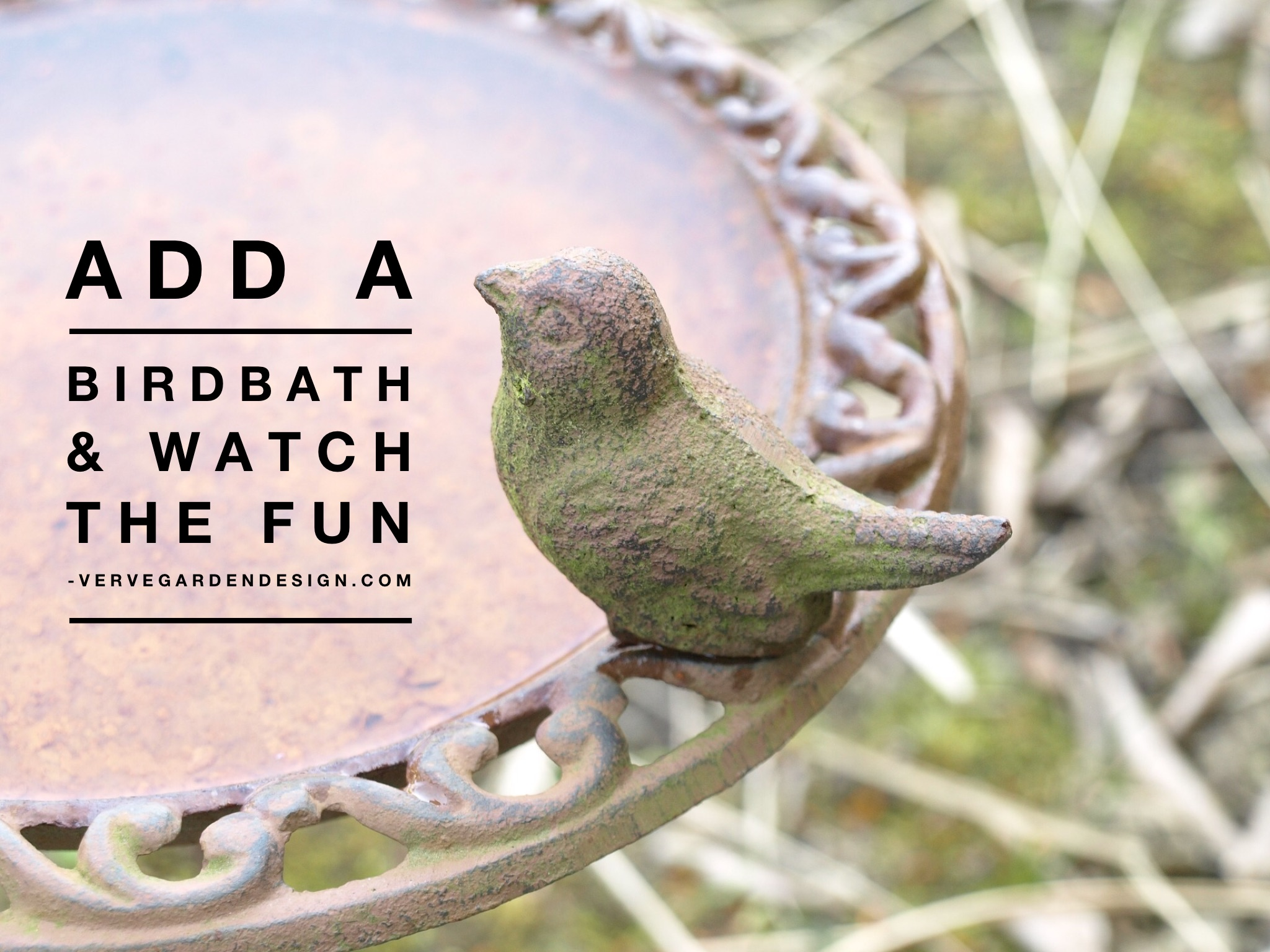 In hot weather, garden birds love a bath and are a joy to watch. Top up and change water regularly