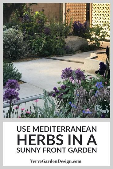 Borage, Oregano, Chives and Other Mediterranean Herbs in a Modern Garden Planting Design. Designer: Tom Massey, Lemon Tree Trust Garden. Image: Lorraine Young/Verve Garden Design.