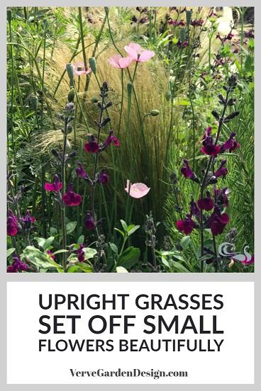 Upright Ornamental Grass (Stipa tenuissima) in Modern Planting Scheme. Designer: Matt Keightley, RHS Feel Good Garden. Image: Lorraine Young/Verve Garden Design.