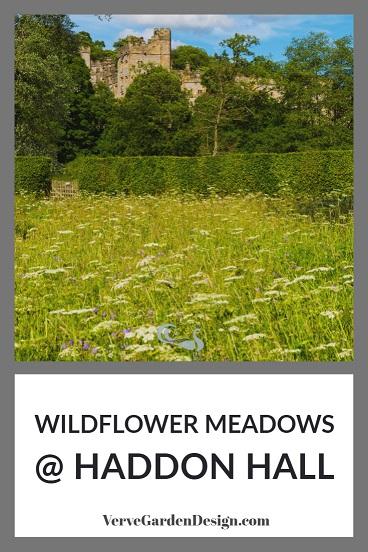 Wildflower Meadow With Yarrow (Achillea millefolium) and Meadow Cranesbill (Geranium pratense) below Haddon Hall in Derbyshire.Image: Chris Denning/Verve Garden Design.