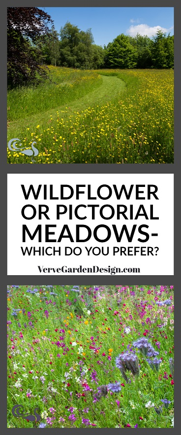 Above- Natural Wildflower Meadows at Cothay Manor. Below- Meadow-Style Planting at Trentham Gardens. Designer: Nigel Dunnett.Images:   Chris Denning/Verve Garden Design.