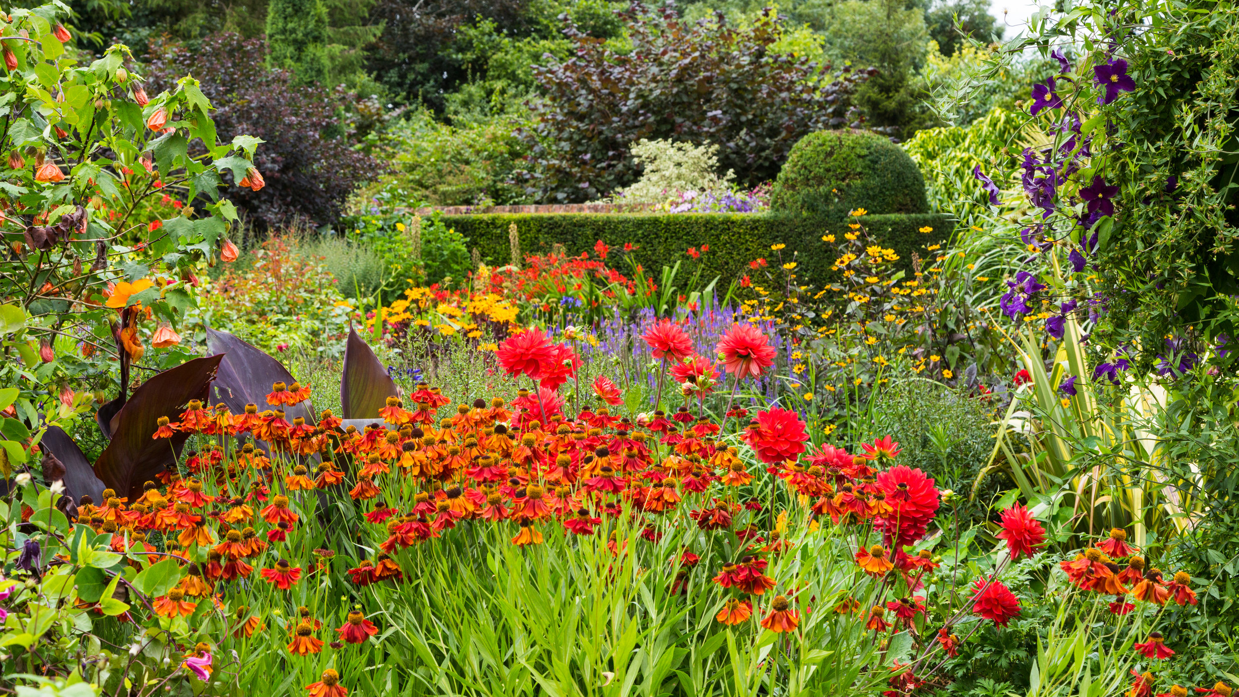 The Hot Borders of Wollerton Old Hall's Lanhydrock Garden. Image: Chris Denning/Verve Garden Design.