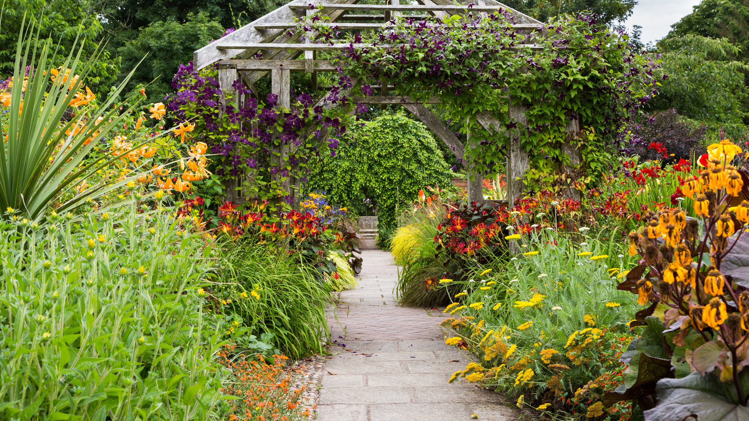 Warm Colours in Deep Tones Add Drama To the Pergola at Wollerton Old Hall. Image: Chris Denning/Verve Garden Design.
