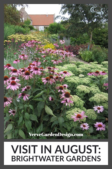 Echinacea and Sedum combination at Brightwater Garden. Image: Lorraine Young/Verve Garden Design.
