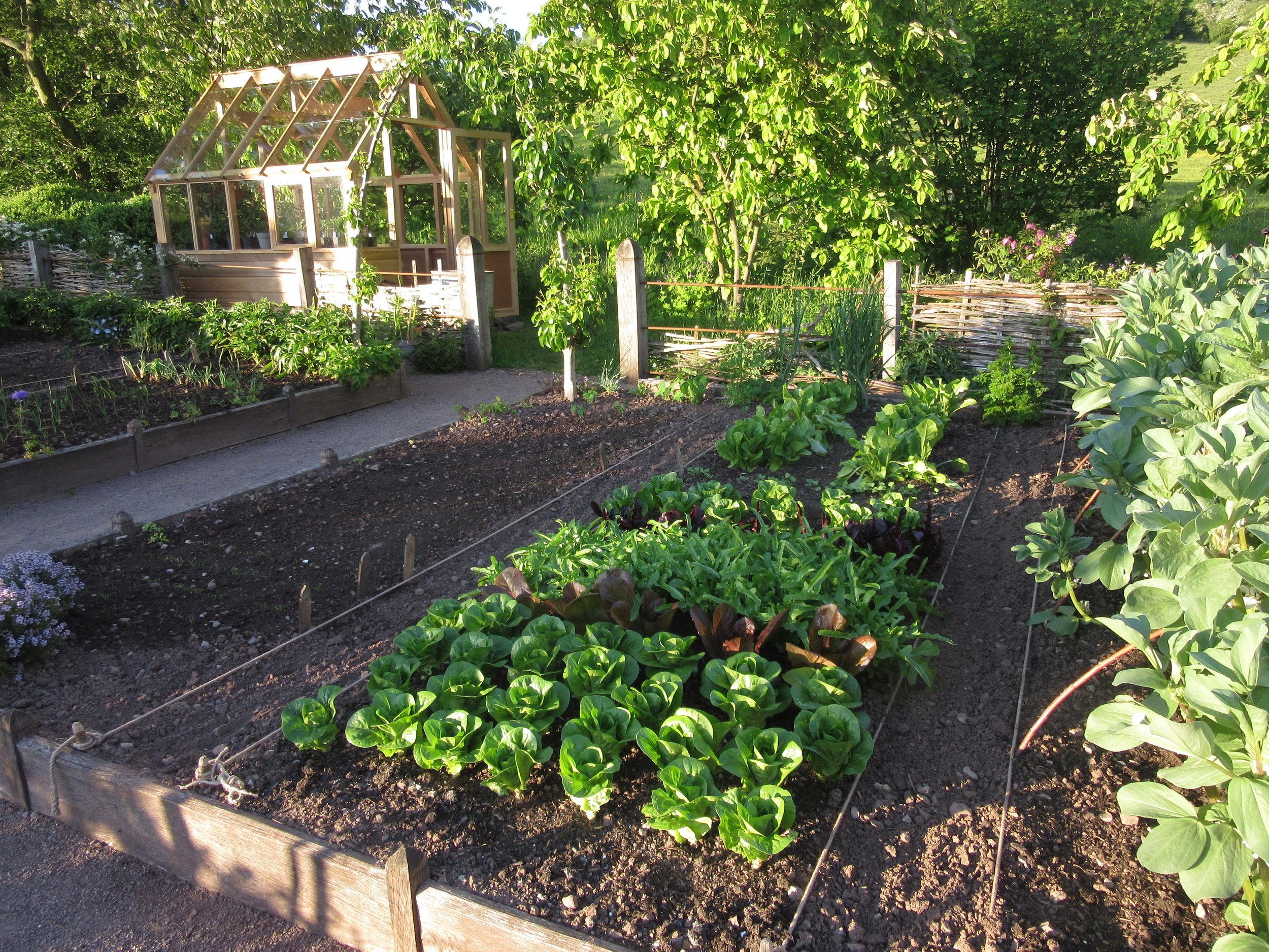 Low, wood raised beds in Arne Maynard kitchen garden. Image: Lorraine Young/Verve Garden Design.