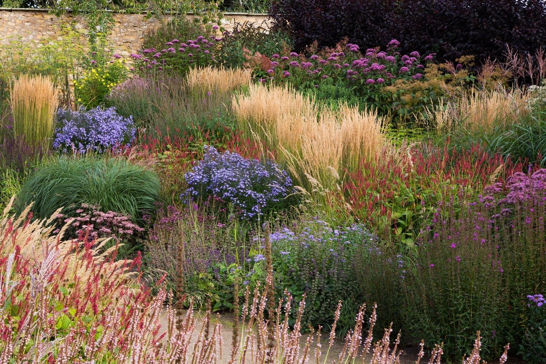 Naturalistic Planting at Cambo Walled Garden. Planting Design: Elliott Forsyth. Image: Chris Denning/ Verve Garden Design.