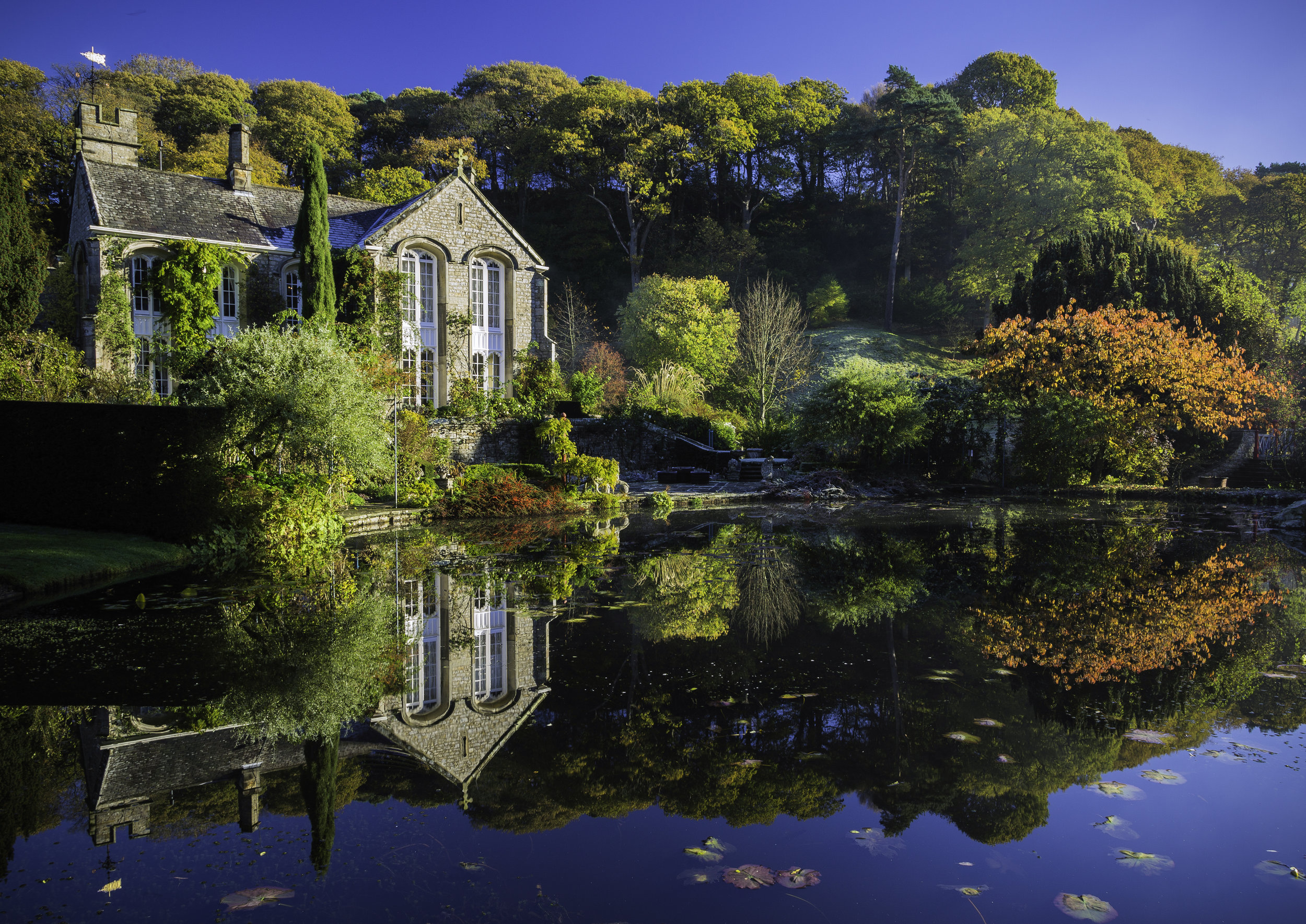 Stunning combination of autumn shrubs and trees reflected in the lake at Gresgarth Hall. Image: Chris Denning/ Verve Garden Design.