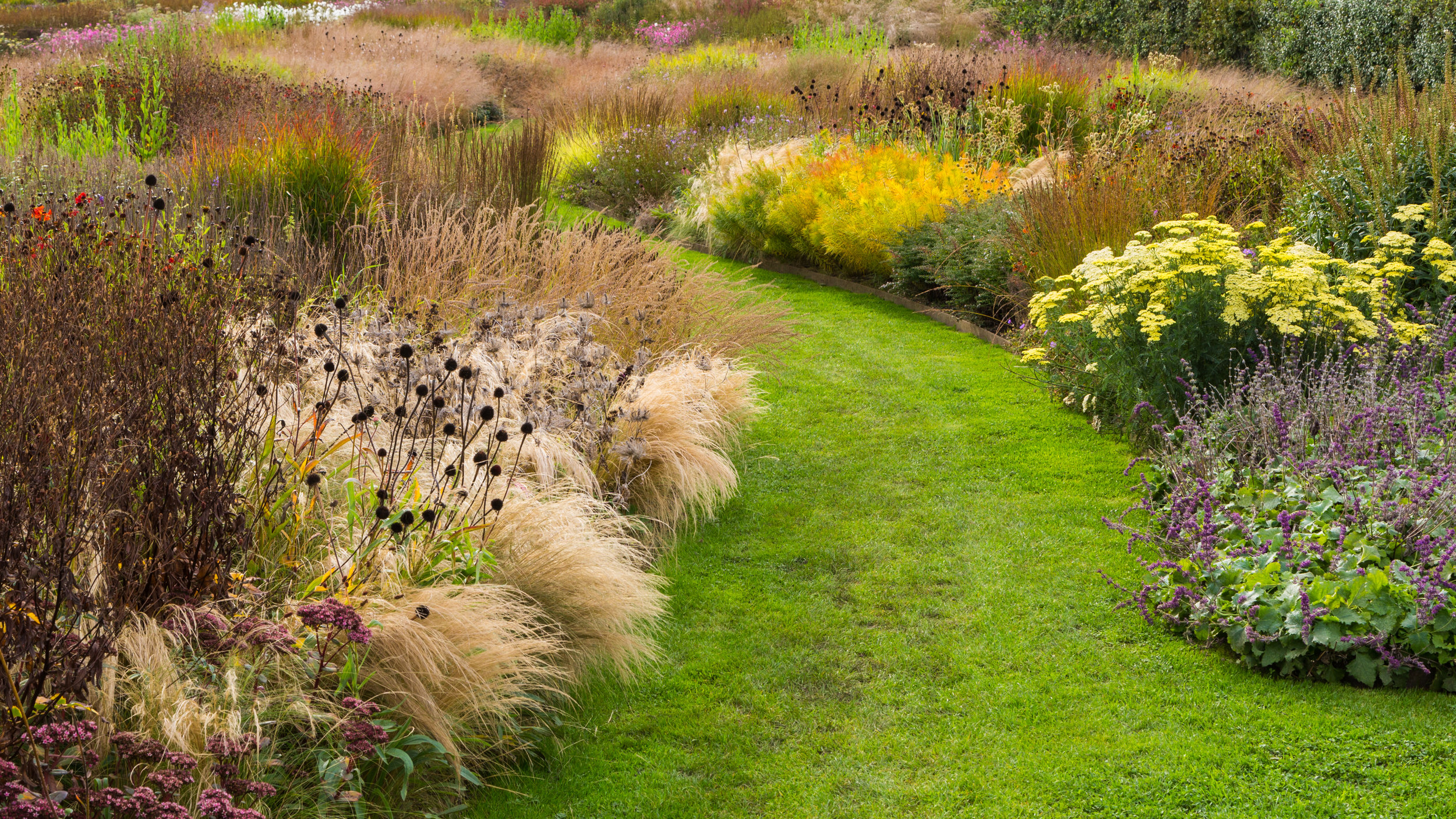 Billowing mounds of grass following the curve of a path encourage you to walk along it. Designer: Piet Oudolf at Hauser and Worth. Image: Chris Denning/Verve Garden Design.