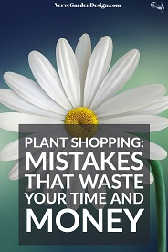 How To Not Waste Money When Buying Garden Plants