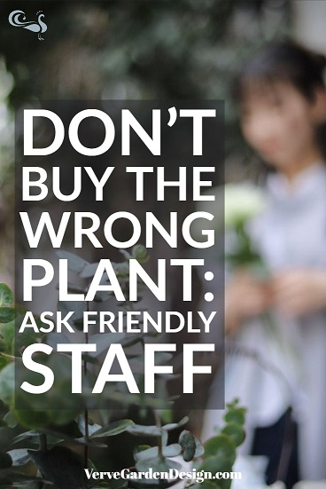 Ask staff which garden plant you need before you buy.