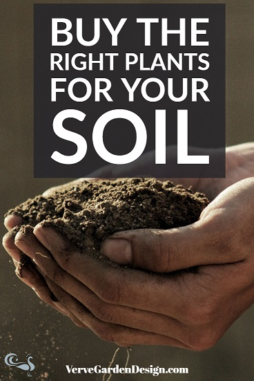 Check soil type and pH before buying garden plants.