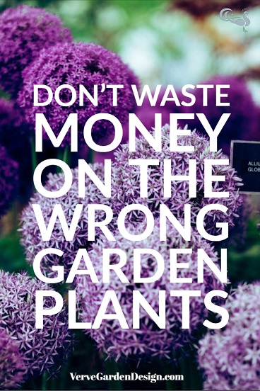 Finding the right plants for your garden will save time and money.