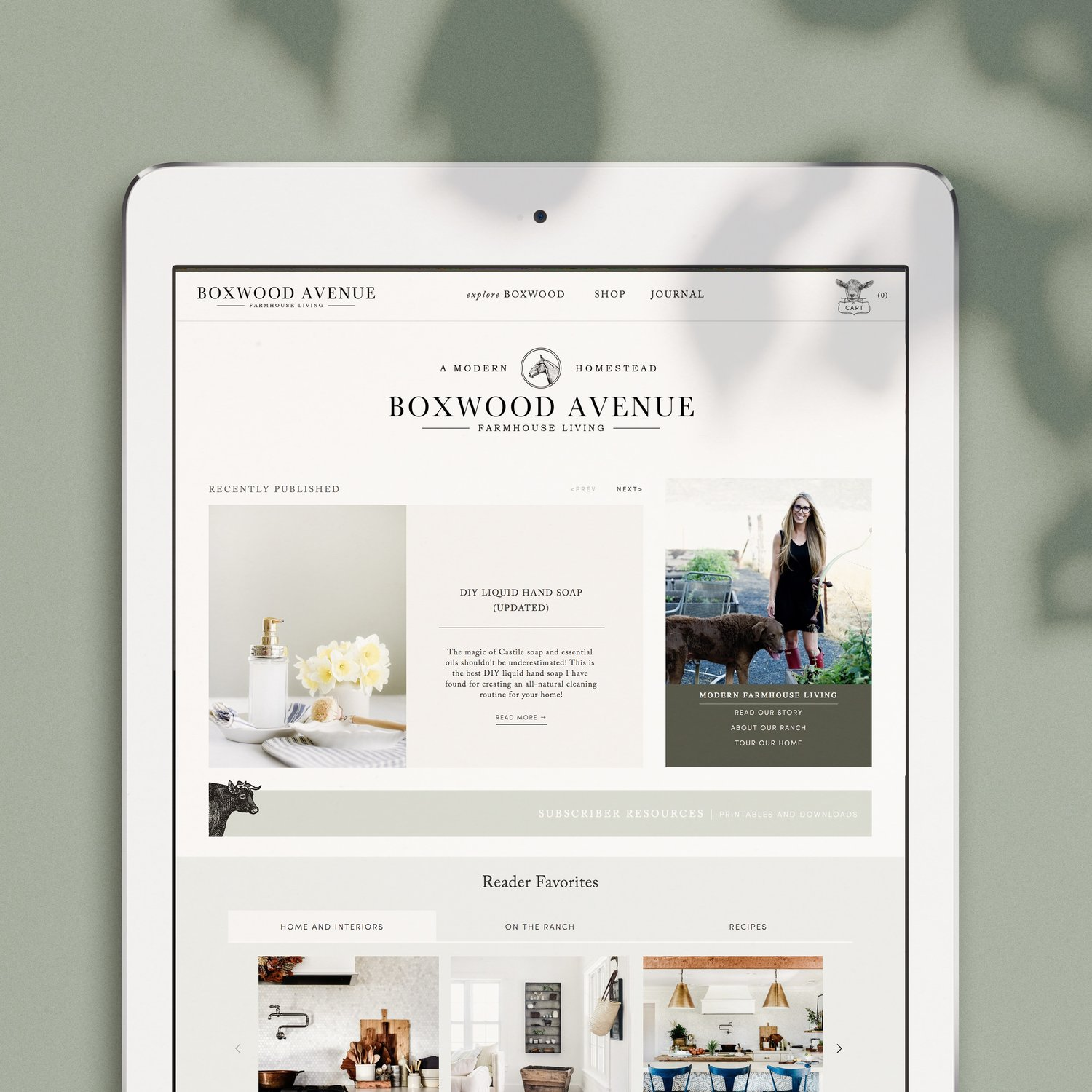Boxwood+Ave+new+Website.jpeg