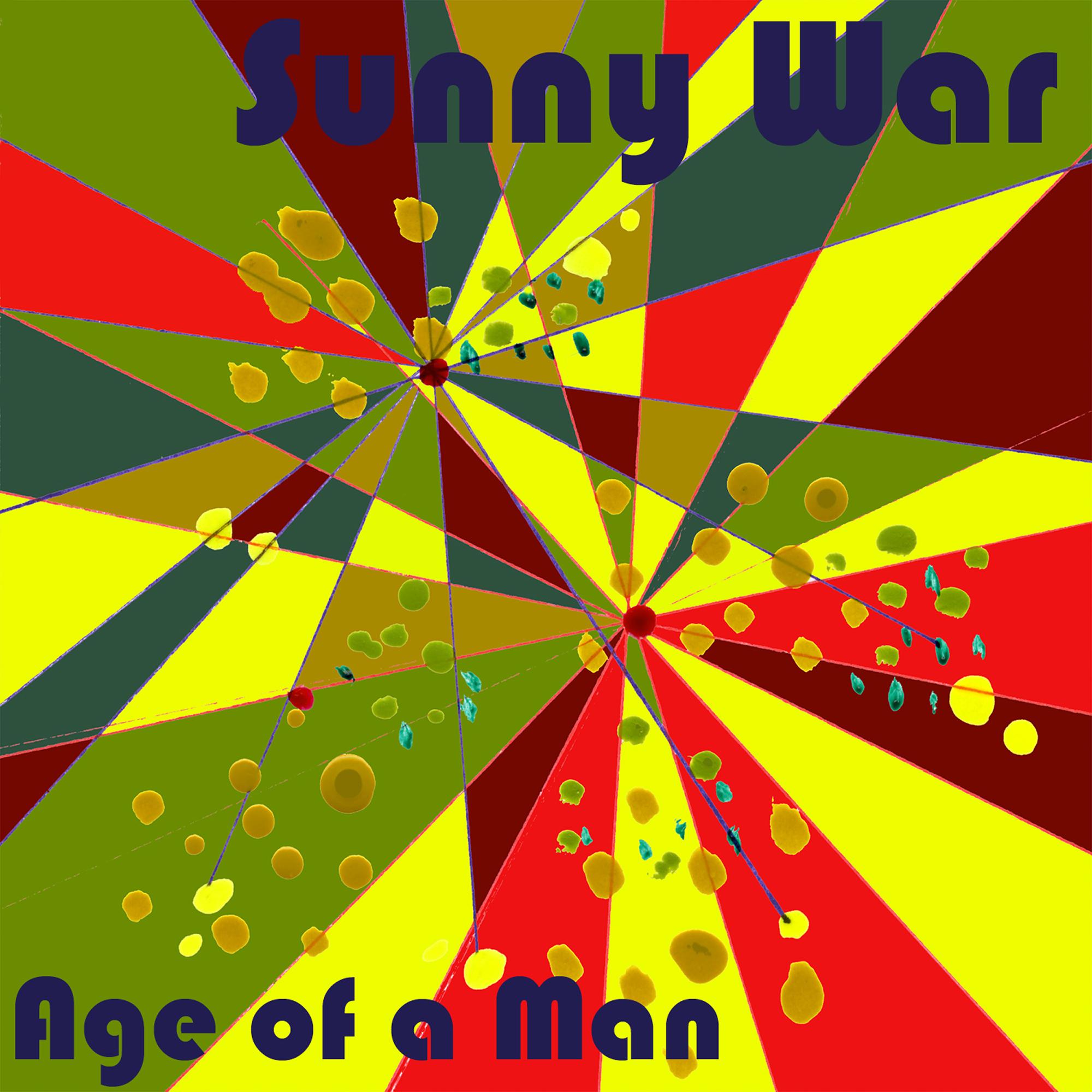 sunny war cover_final_USE (1).jpg