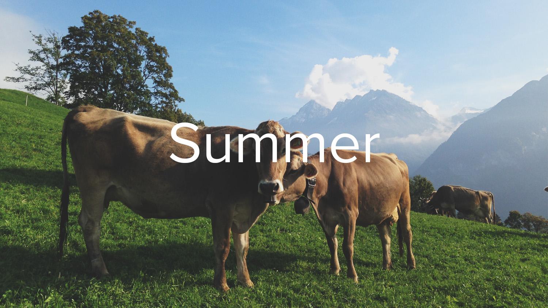 Bilder vom Haslital im Sommer