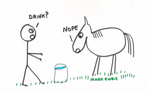 lead a horse to water.jpg