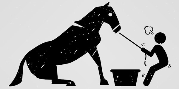 idiom-explained-lead-a-horse-to-water.jpg
