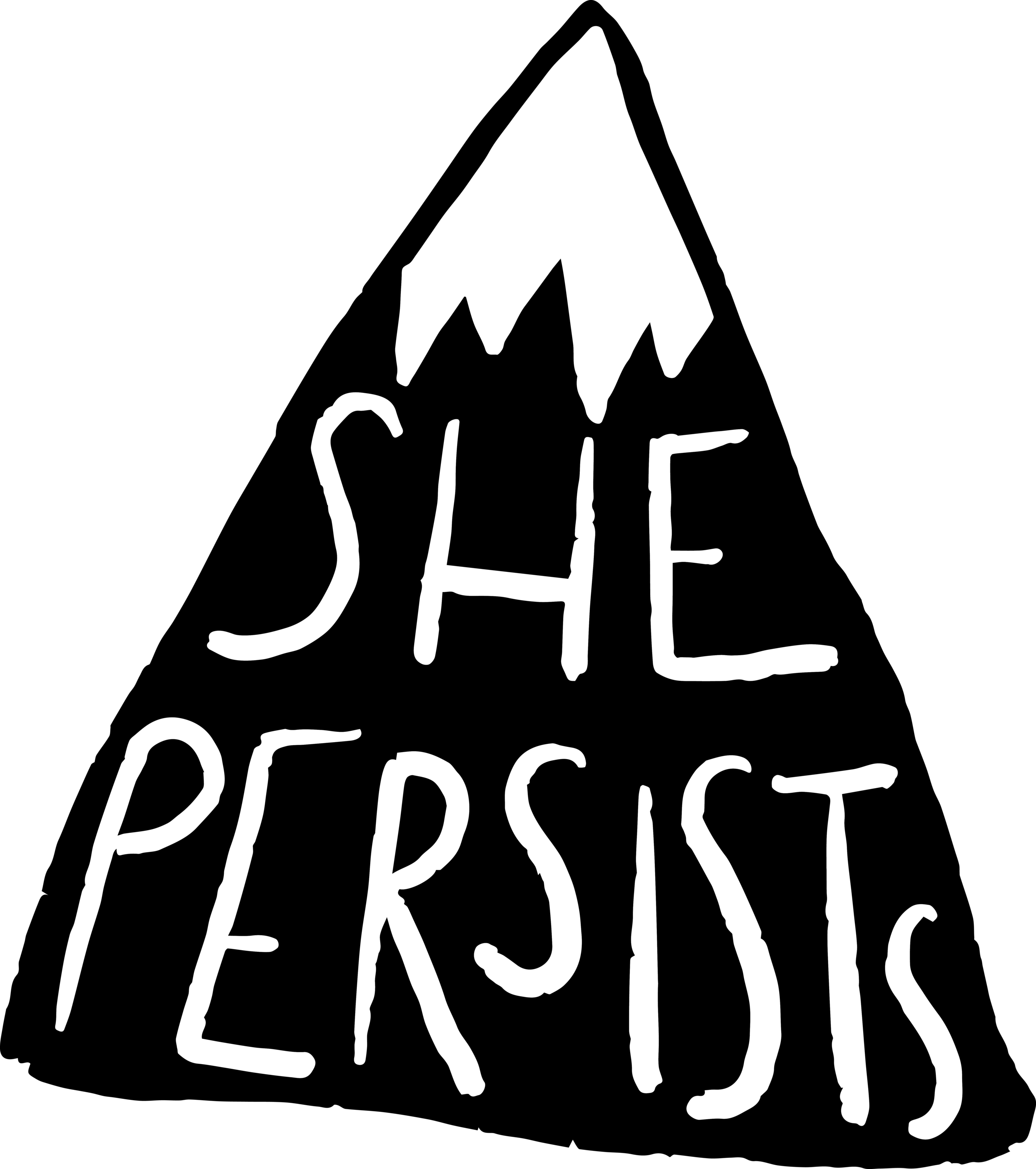Persist Mt. 2017