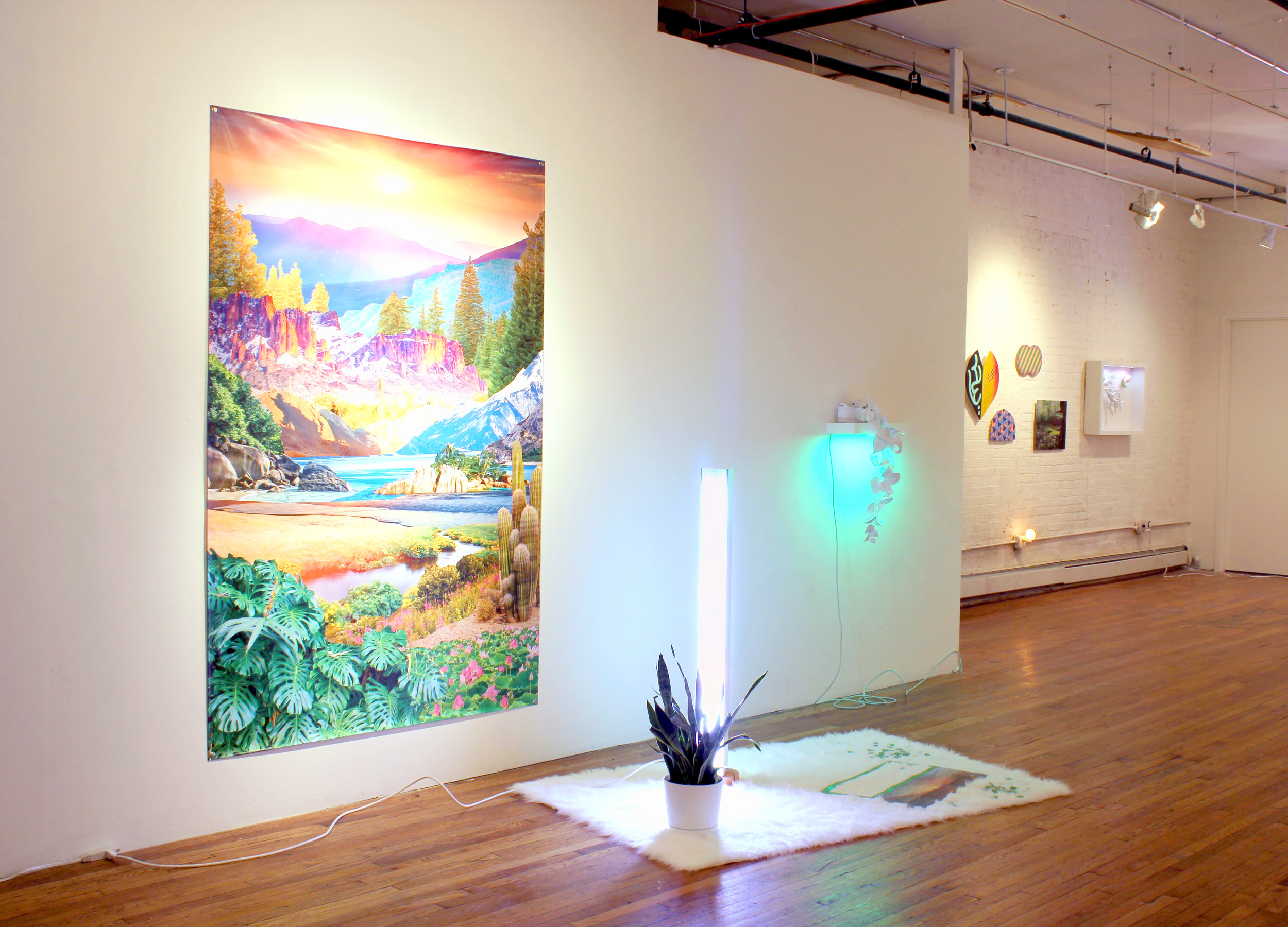 Matt Spahr and Val Molnar  Sunset for a transcendent driver  2017 Step-and-repeat, shag rug, sunset lights, snake plant, puzzle, salt rock 10' x 15' 8'