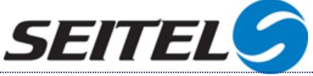 Seitel Logo.png