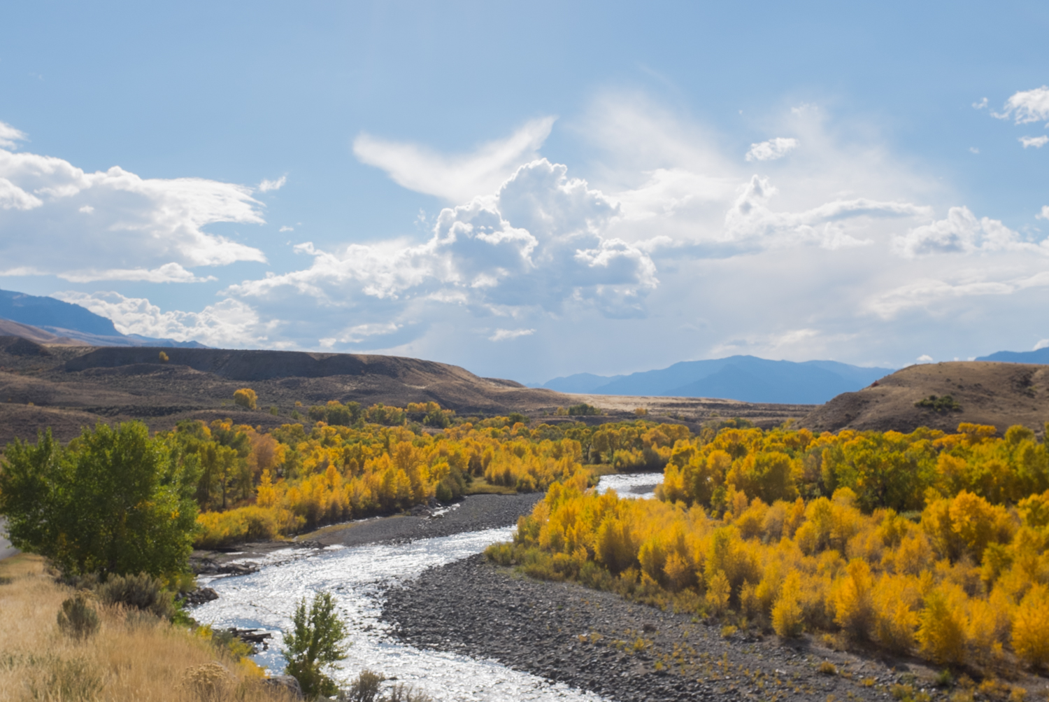 The South Fork of the Shoshone River near Cody, Wyoming.