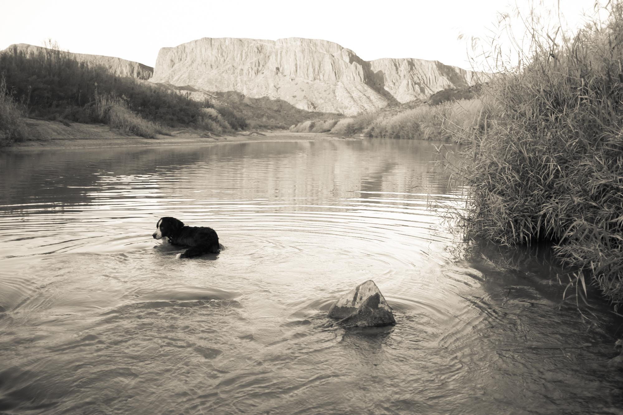 The Rio Grande near Lajitas, Texas.
