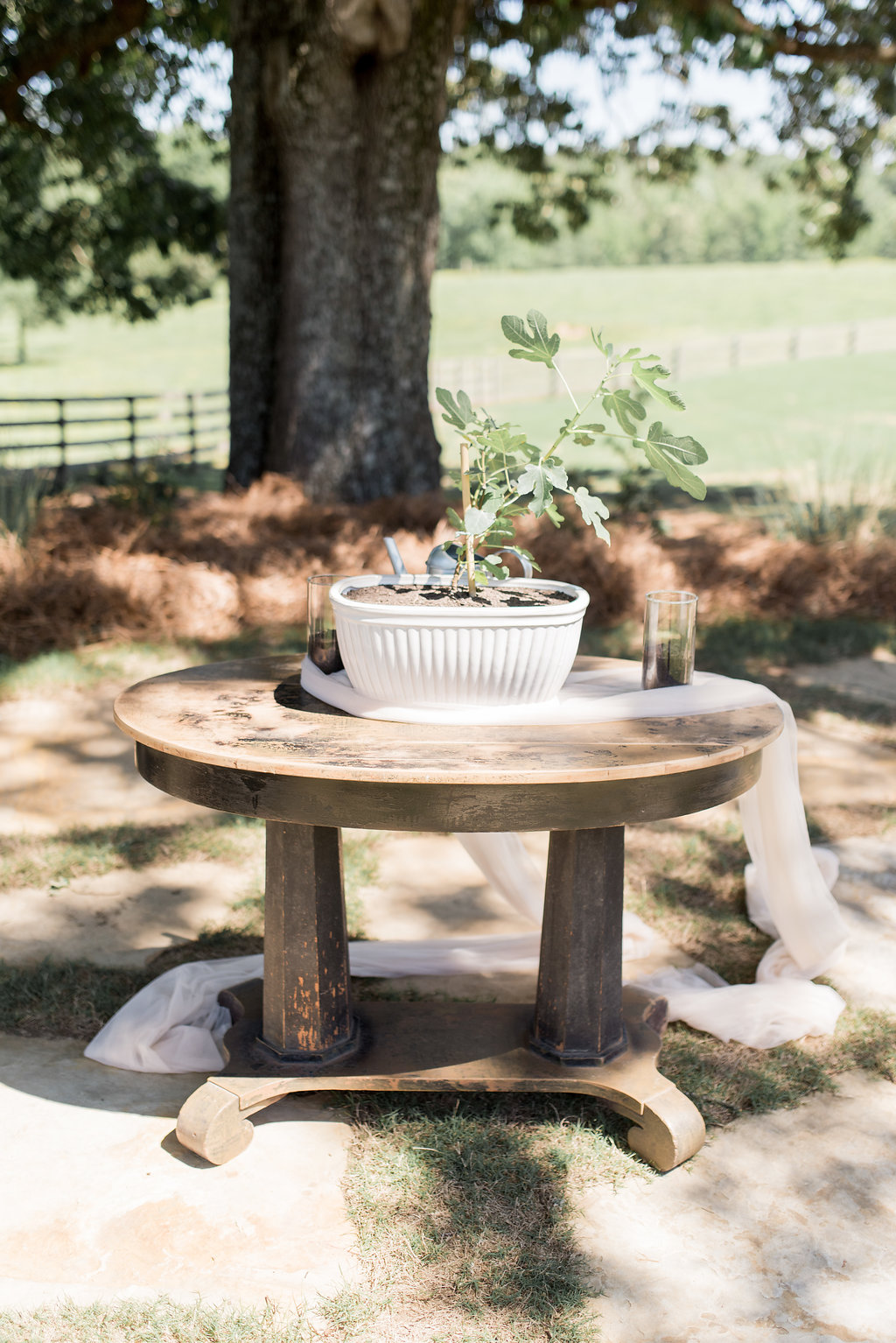 Benjamin. - Vintage library table for their planting unity ceremony.