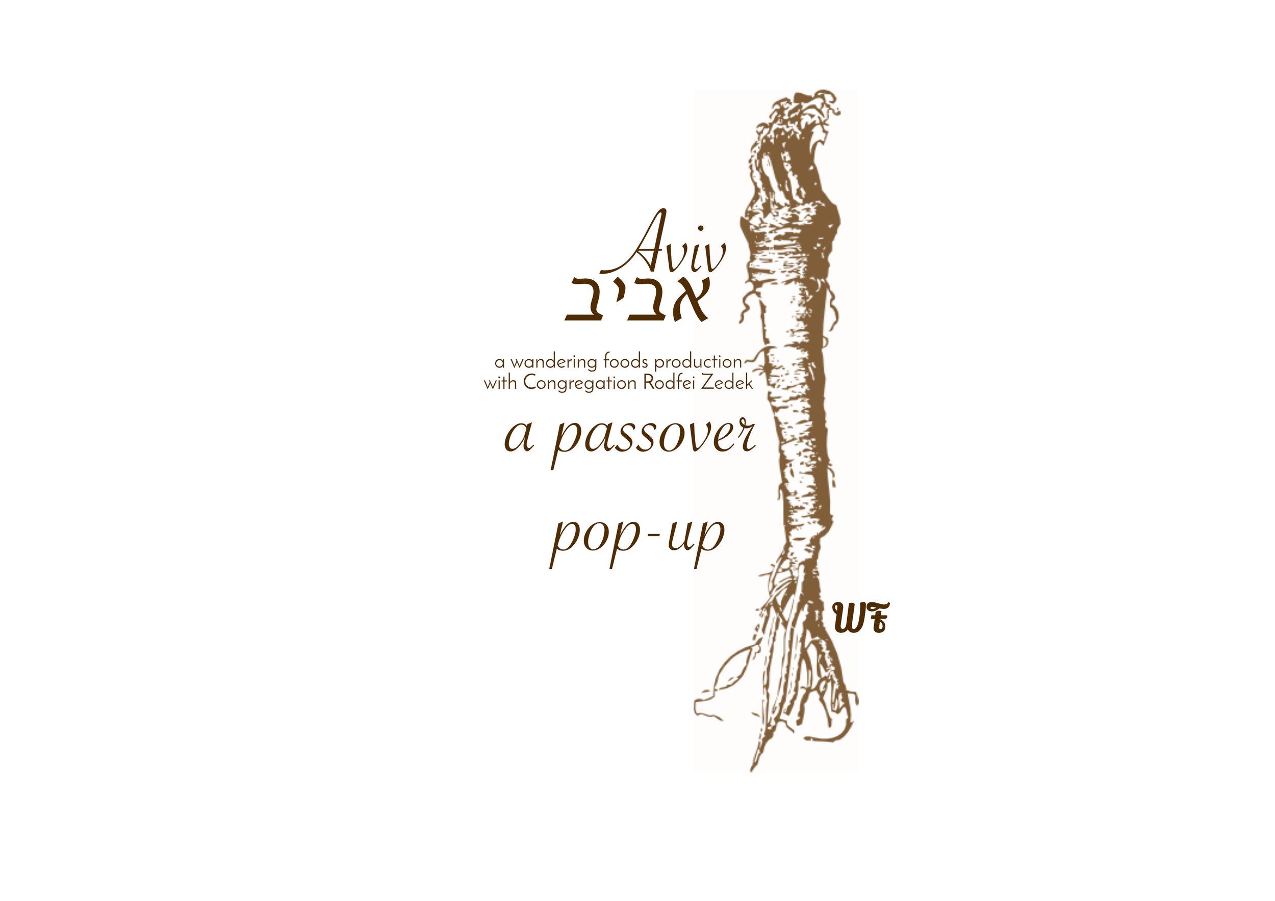 Aviv: Passover Pop-UP