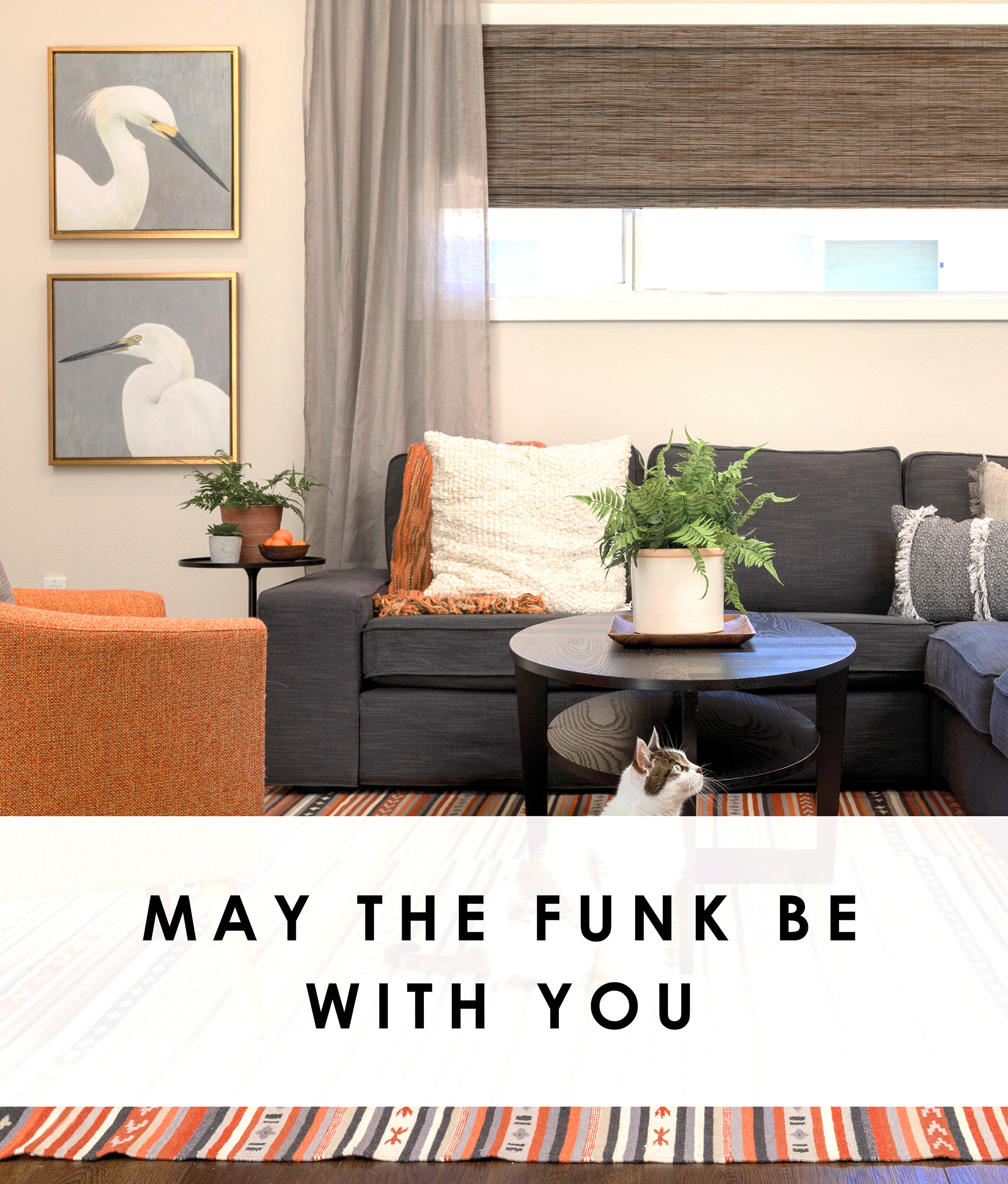 My the Funk be with You.jpg