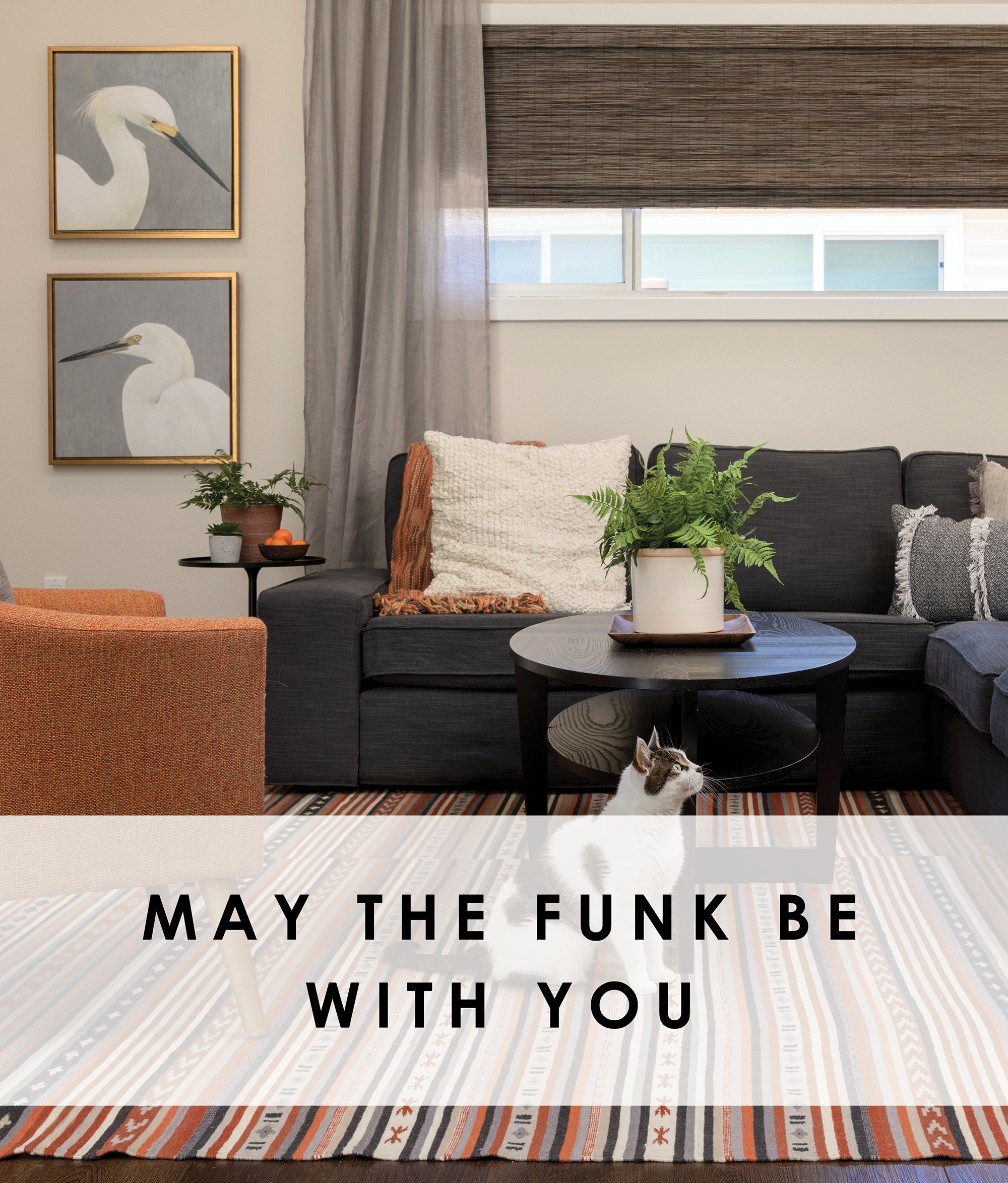 May the Funk be with You.jpg