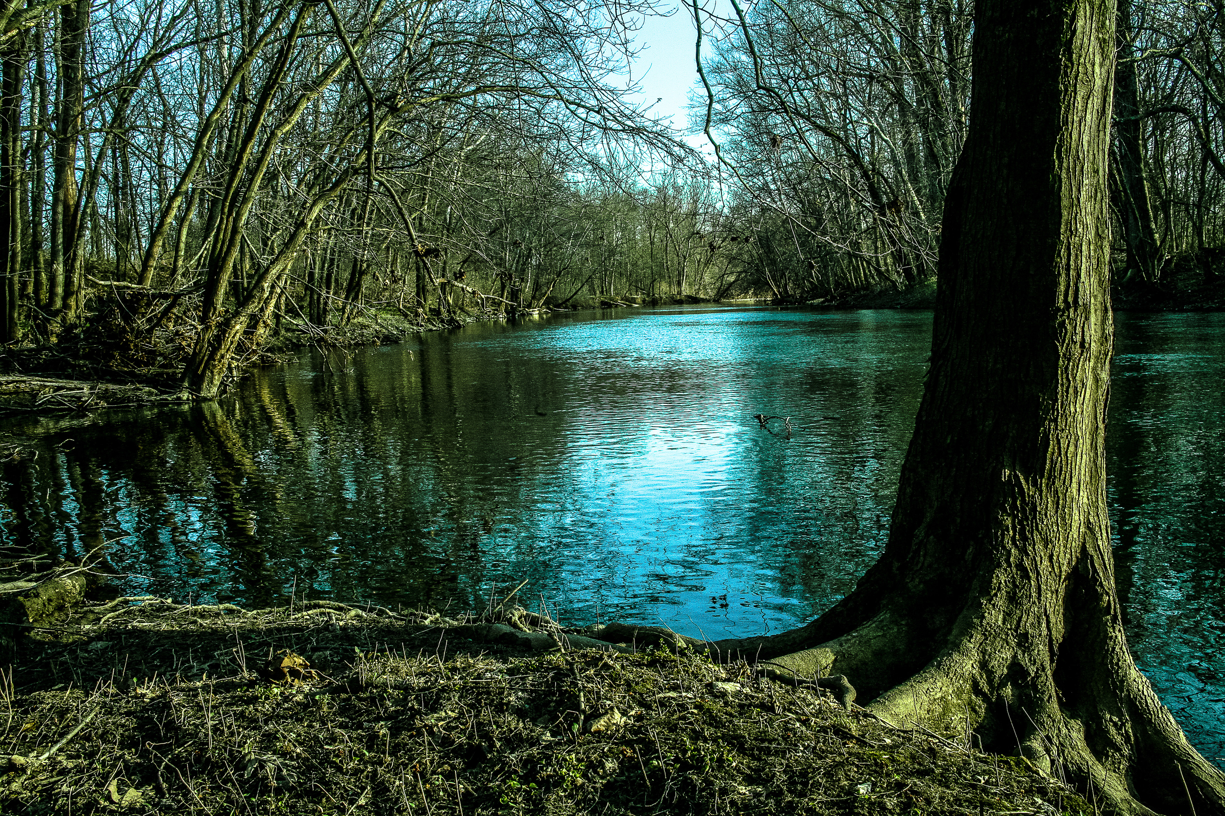 darby creek.jpg