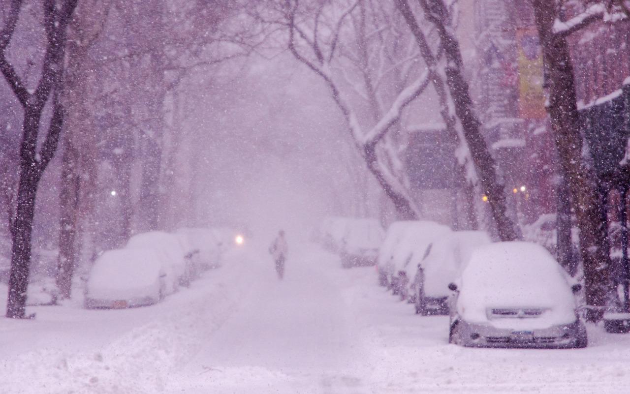 Snow day in Brooklyn, NY.