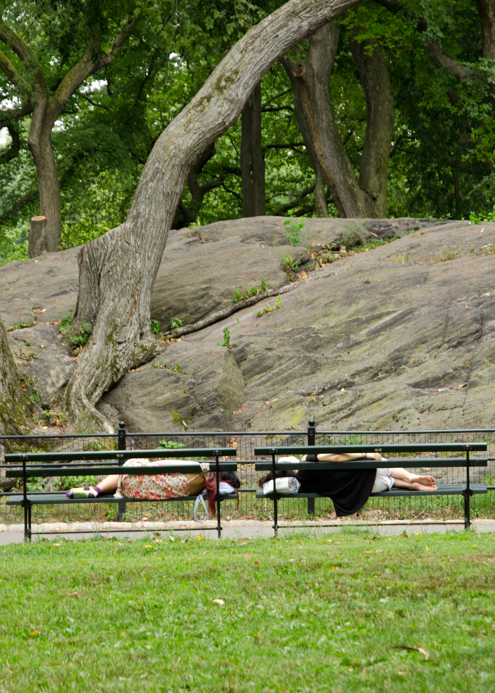 Central Park moment, NYC