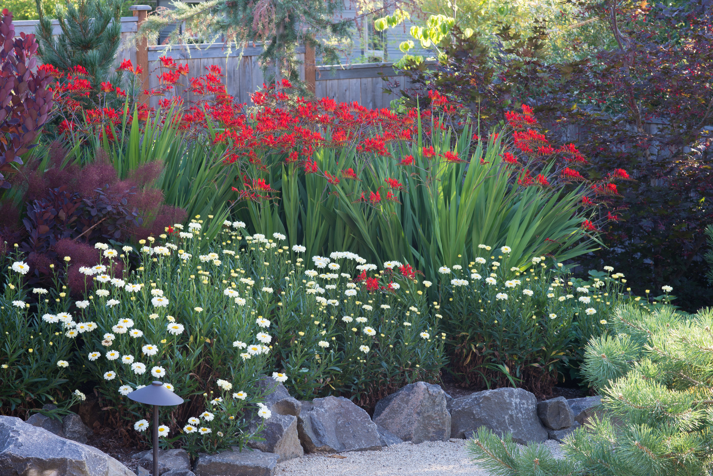 Sept Garden 05.jpg
