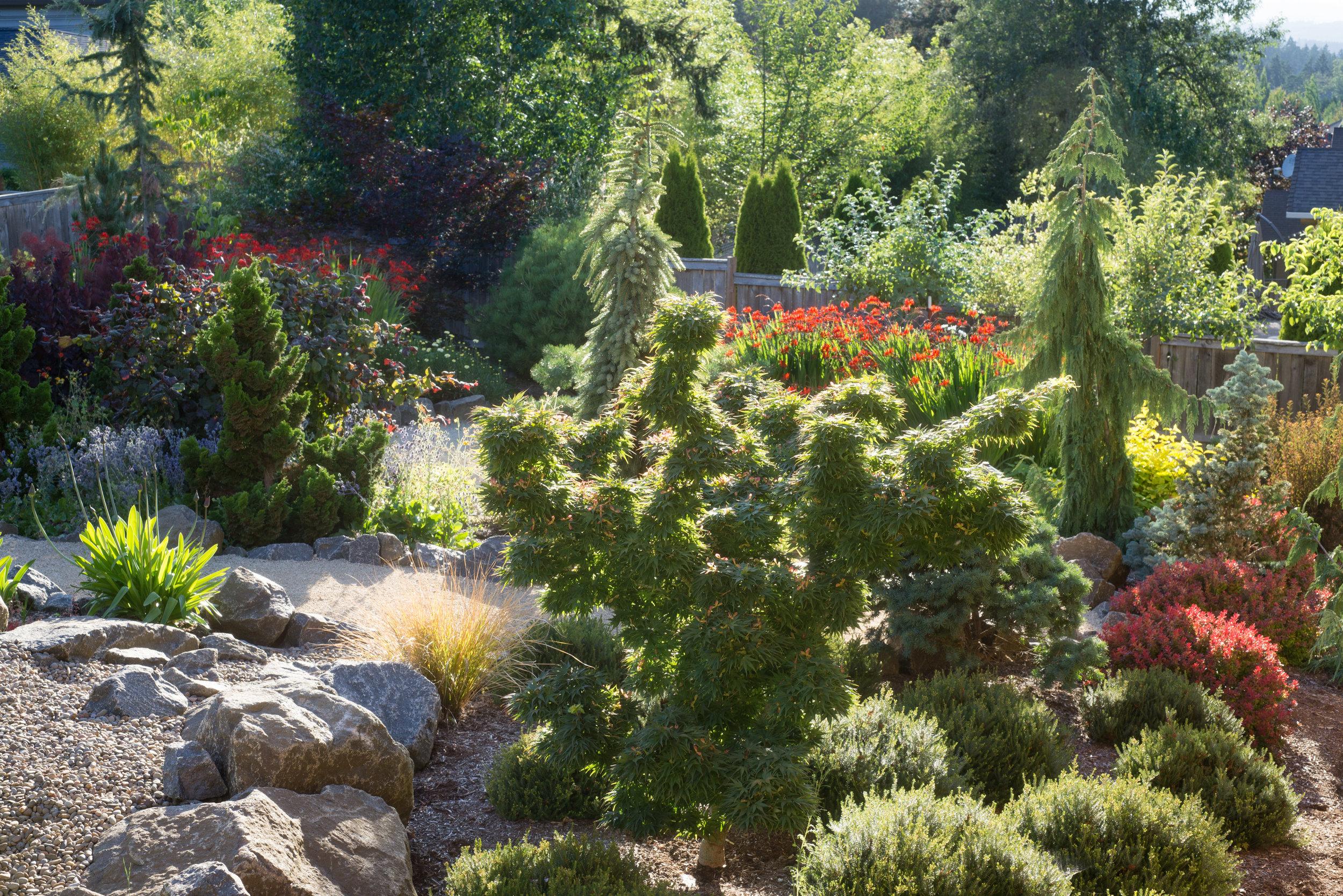 Sept Garden 06.jpg