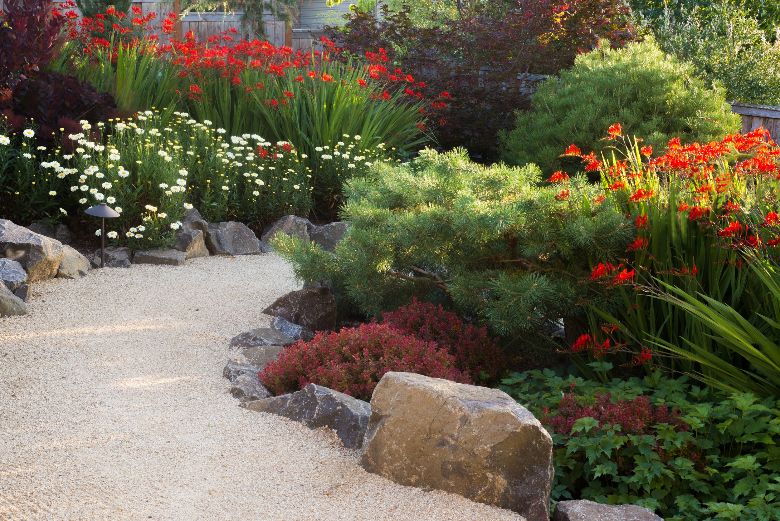 Sept Garden 13.jpg