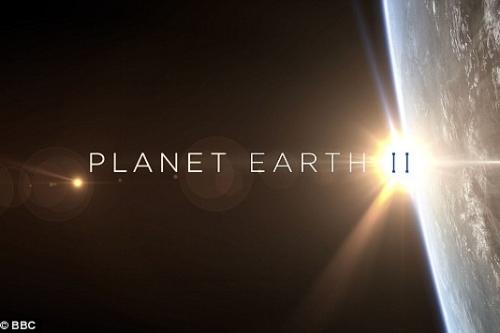planet earth II daily mail.jpg