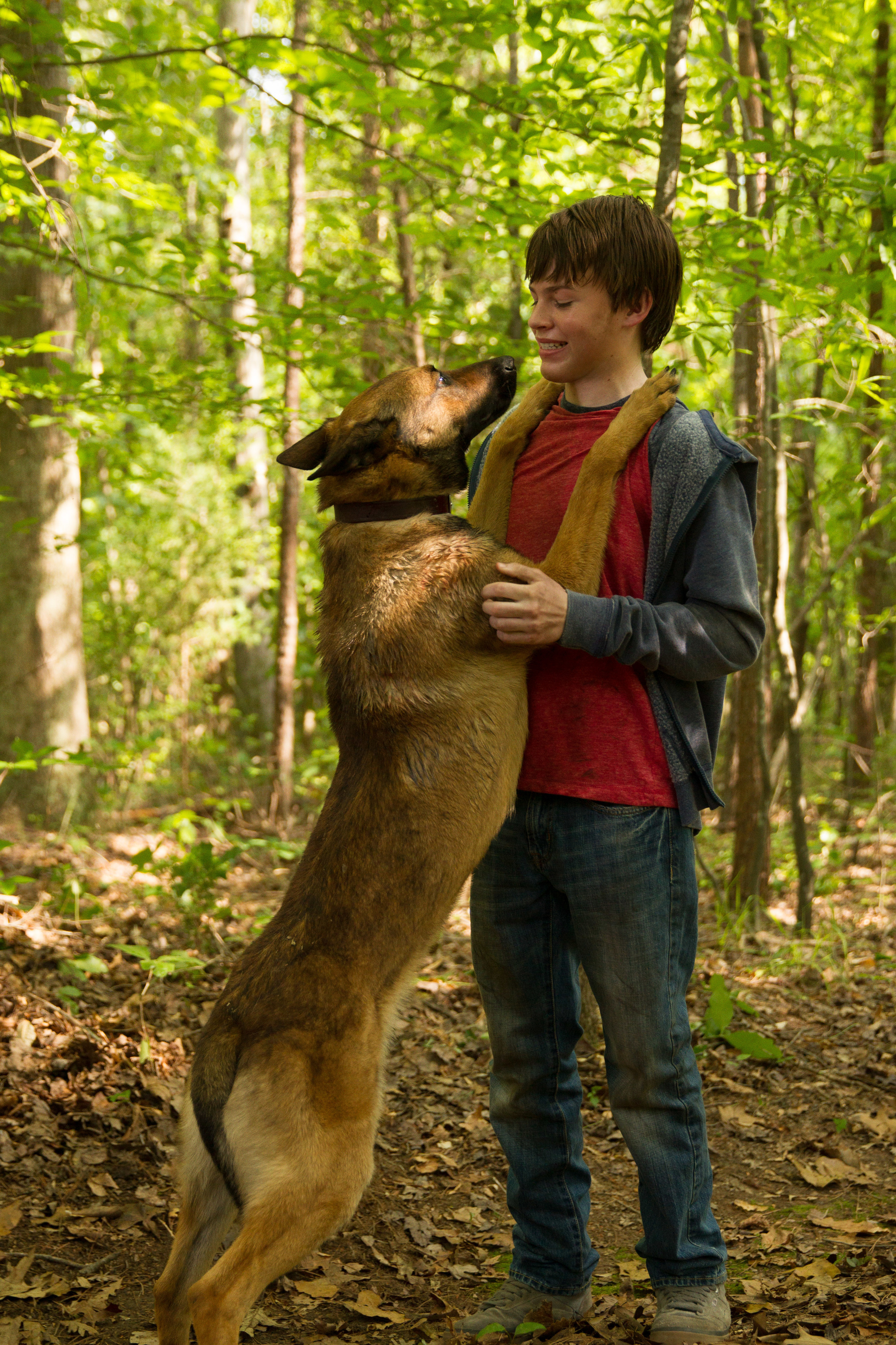 """MAX with JOSH WIGGINS as Justin Wincott in Warner Bros. Pictures and Metro-Goldwyn-Mayer Pictures' family drama """"MAX,"""" a Warner Bros. Pictures and Metro-Goldwyn-Mayer Pictures release."""
