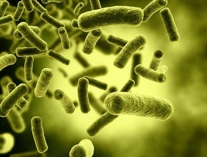 . : bacoban antimicrobial