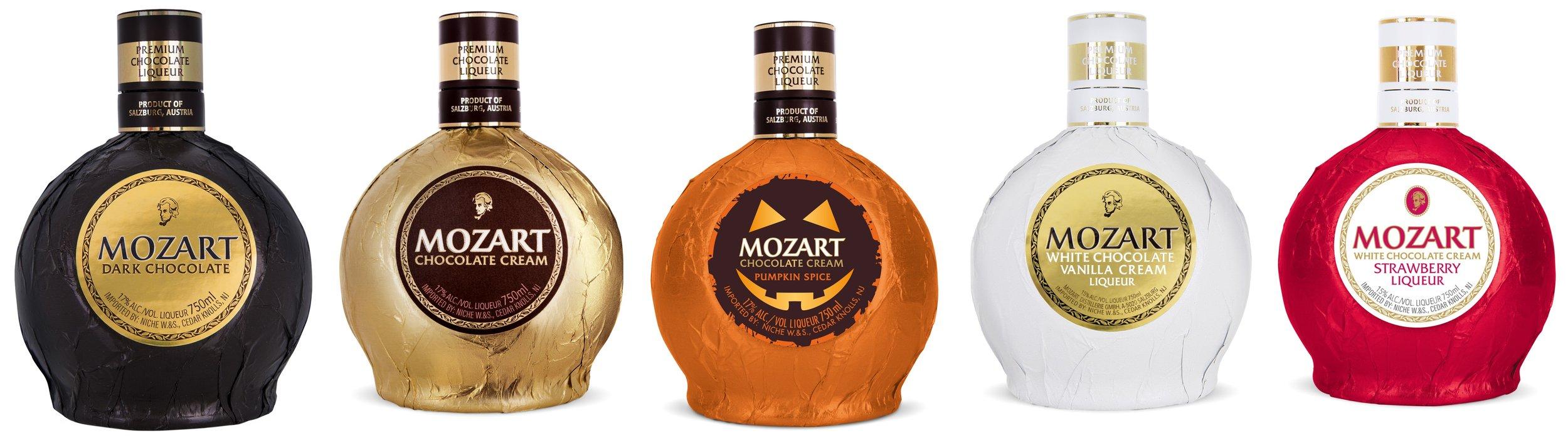 Mozart Family.jpg