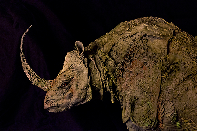 rhino5.jpg