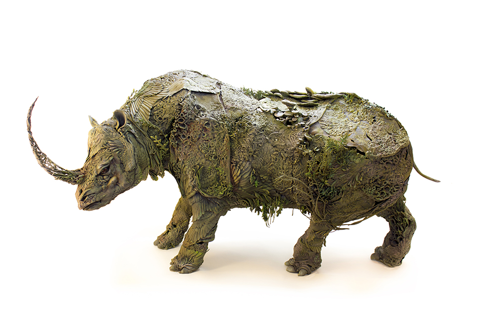rhino+.jpg
