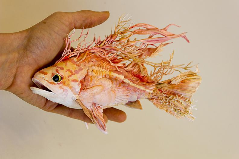 rockfish5.jpg