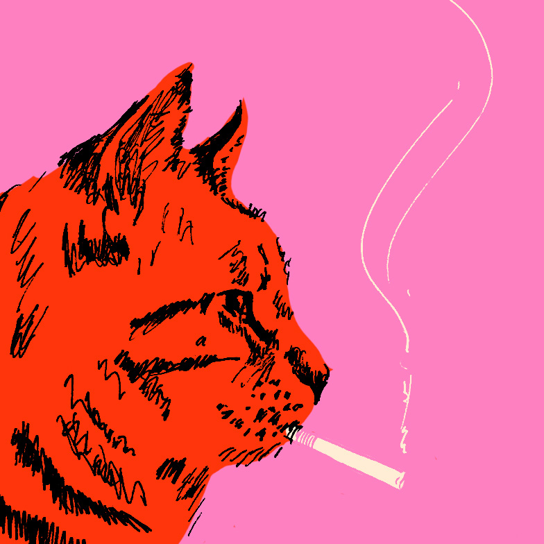 smokingcat_color.jpg