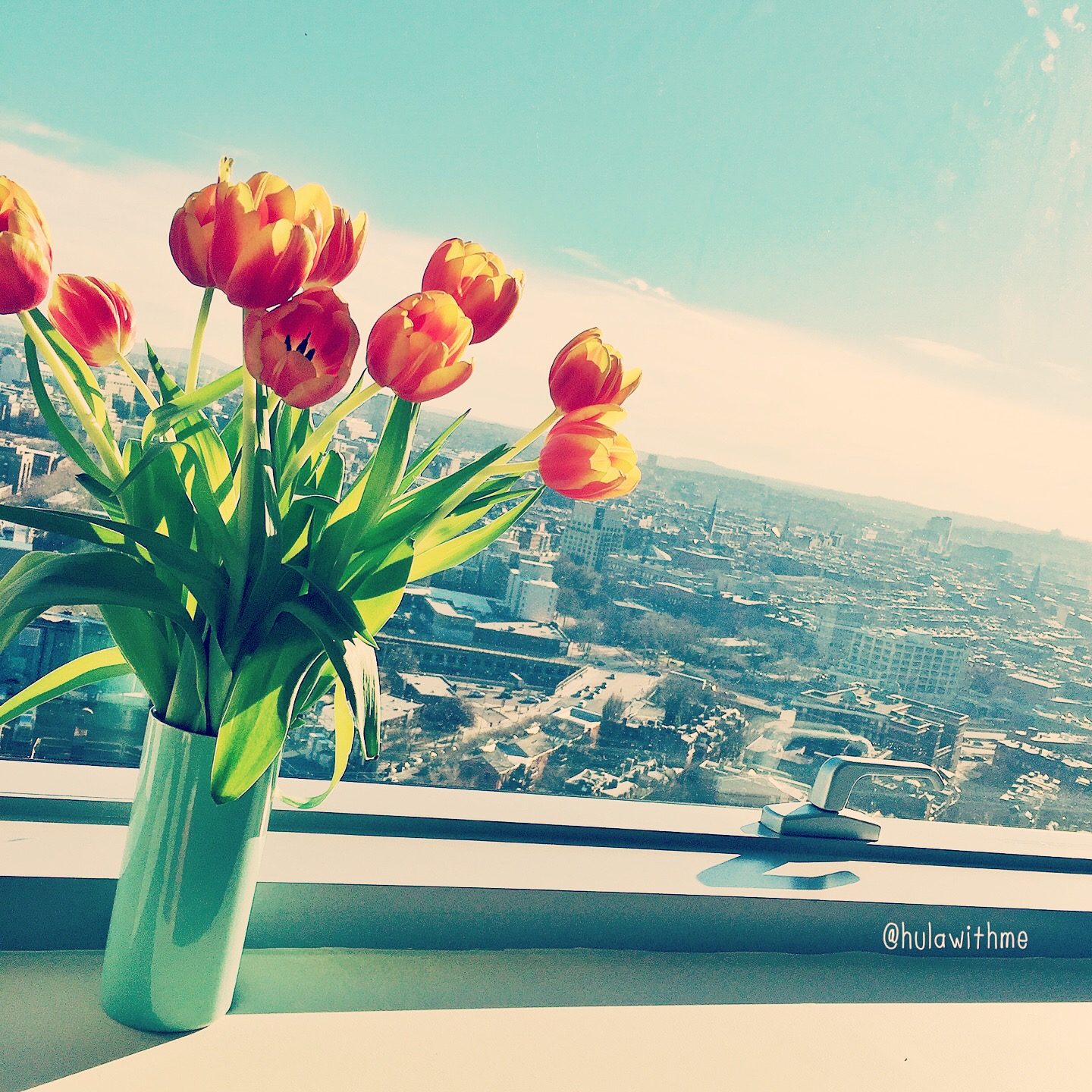Spring forward...with these lovely tulips.